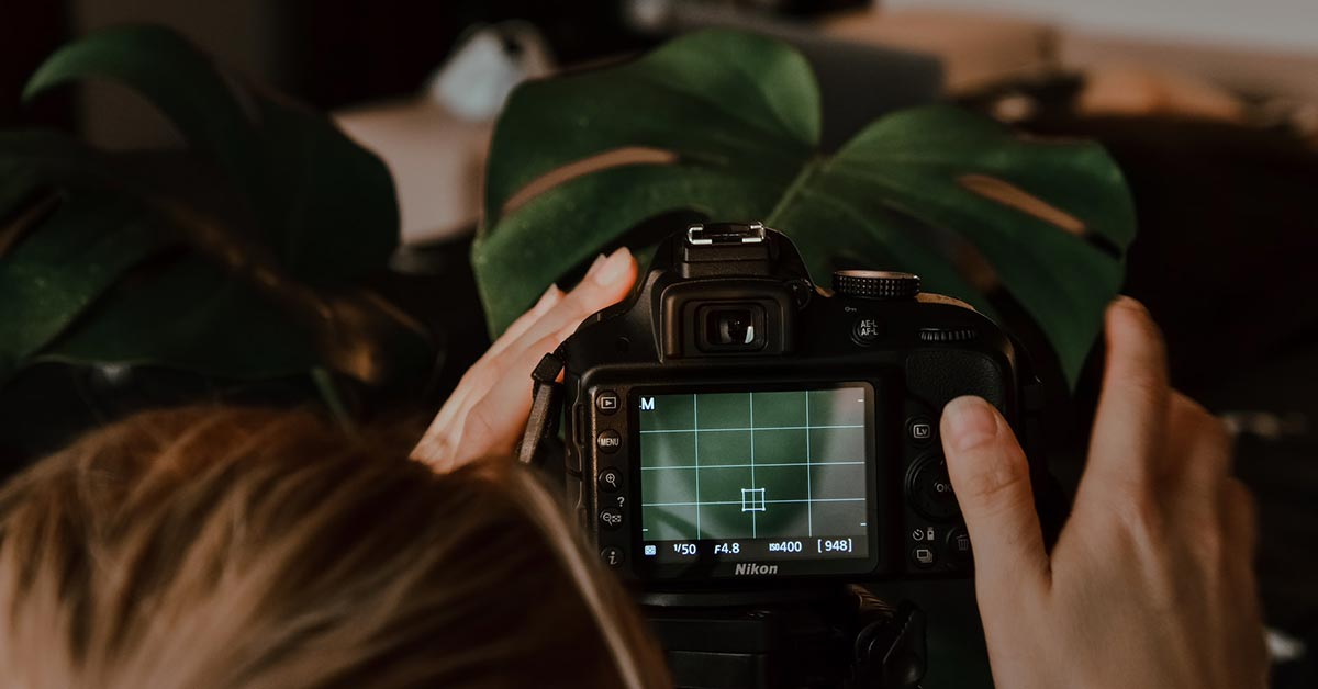 Photographing a plant